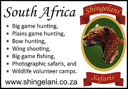 Shingelani Safaris logo and link.