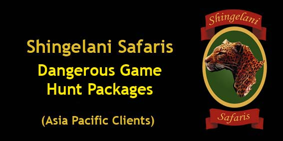 South African Safari Packages